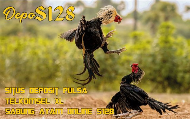 S128 DEPOSIT PULSA